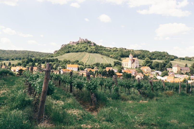 Niederösterreich Reise: Weinviertel Falkenstein Ruine und Weinberge